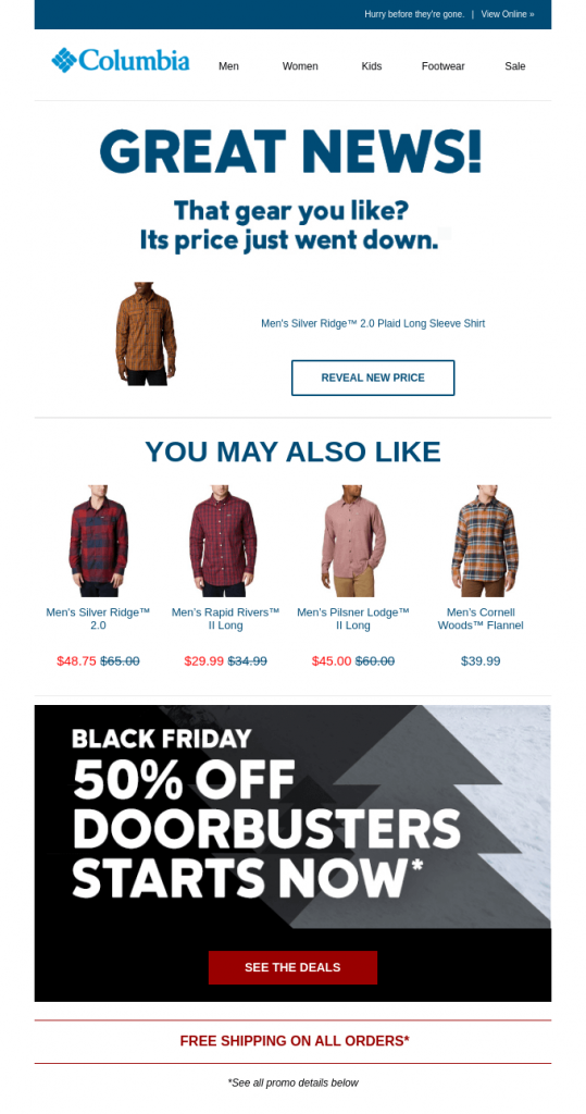 Example of an Holiday Promotional Email