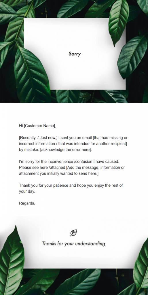 Example of an Apology Email